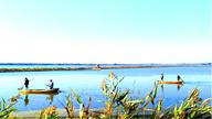 <div class='new_lzbiao'>海水生态健康养殖示范园</div>