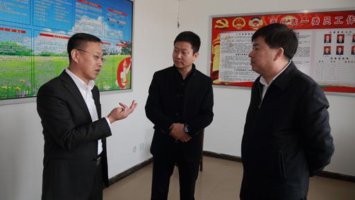 丹东市工商局王志丹局长一行到小甸子走访看望选派干部