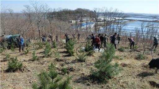 海洋红农场开展植树活动