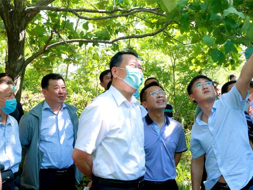 文明标衺+���_省人大调研我市野生动物保护情况-中国东港